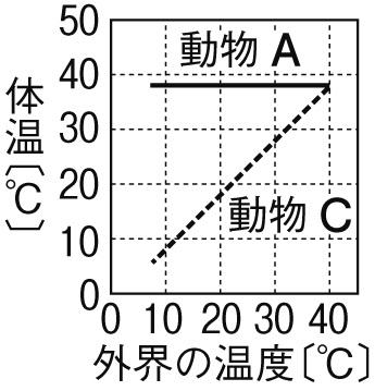 変温動物と恒温動物のグラフ