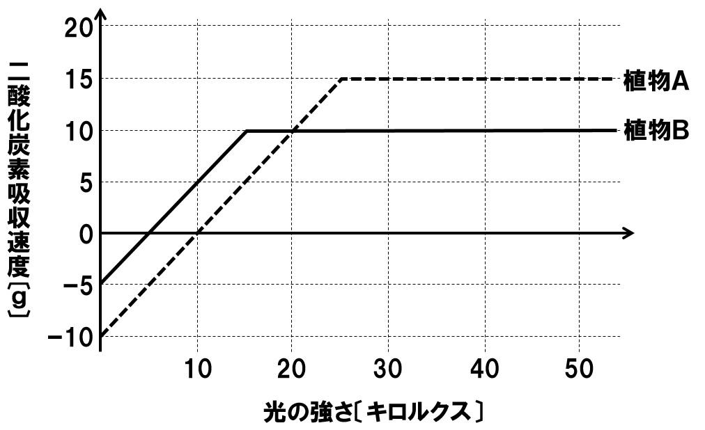 光合成速度の問題